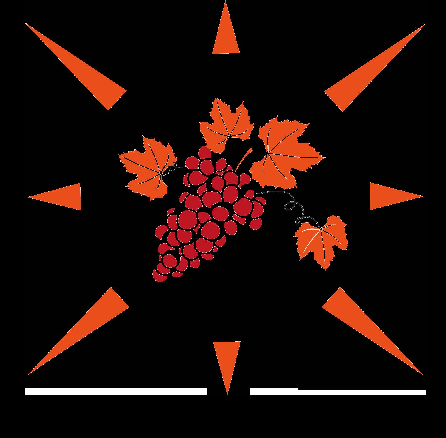 Logo Azienda Vitivinicola Maddalena Pantelleria